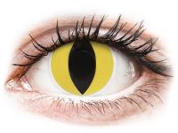 alensa.pl - Soczewki kontaktowe - ColourVUE Crazy Lens - Cat Eye - zerówki