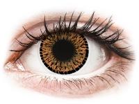 alensa.pl - Soczewki kontaktowe - ColourVUE Elegance Brown - zerówki
